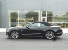 2015 Ford Mustang GT Premium Green Bay WI